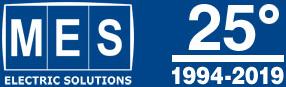 Mesnet Logo